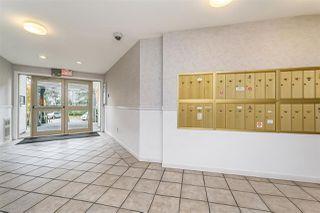 Photo 5: 204 10743 139 STREET in Surrey: Whalley Condo for sale (North Surrey)  : MLS®# R2222136