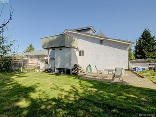 Photo 18: 3246 Irma Street in VICTORIA: SW Rudd Park Single Family Detached for sale (Saanich West)  : MLS®# 390608