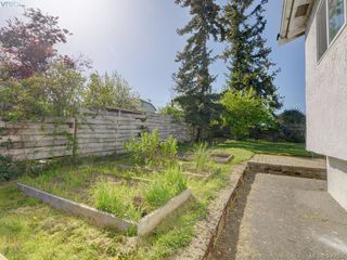 Photo 17: 3246 Irma Street in VICTORIA: SW Rudd Park Single Family Detached for sale (Saanich West)  : MLS®# 390608