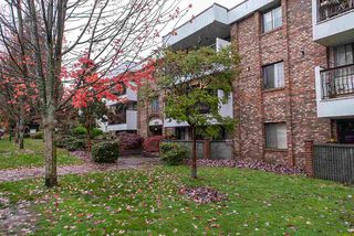 "Photo 1: 305 8770 LAUREL Street in Vancouver: Marpole Condo for sale in ""Villa Marine"" (Vancouver West)  : MLS®# R2319641"