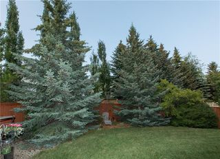Photo 43: 18 SCENIC RIDGE Way NW in Calgary: Scenic Acres Detached for sale : MLS®# C4223357