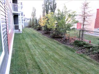 Photo 15: 114 1820 RUTHERFORD Road in Edmonton: Zone 55 Condo for sale : MLS®# E4142691