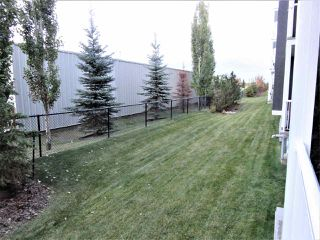 Photo 17: 114 1820 RUTHERFORD Road in Edmonton: Zone 55 Condo for sale : MLS®# E4142691