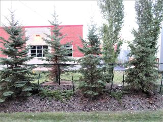 Photo 16: 114 1820 RUTHERFORD Road in Edmonton: Zone 55 Condo for sale : MLS®# E4142691