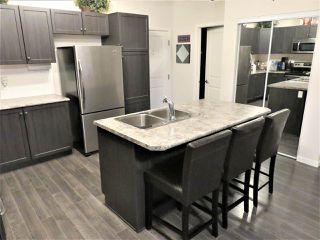 Photo 5: 114 1820 RUTHERFORD Road in Edmonton: Zone 55 Condo for sale : MLS®# E4142691