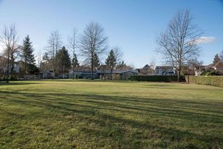 Photo 6: 4634 217A Street in Langley: Murrayville House for sale : MLS®# R2339402