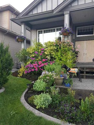 Photo 20: 19156 117A Avenue in Pitt Meadows: Central Meadows House for sale : MLS®# R2347085