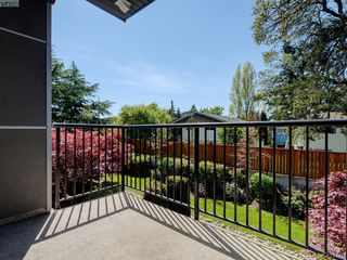 Photo 12: 205 4030 Borden St in VICTORIA: SE Lake Hill Condo for sale (Saanich East)  : MLS®# 812931