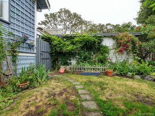 Photo 17: 2617 Fernwood Road in VICTORIA: Vi Oaklands Single Family Detached for sale (Victoria)  : MLS®# 413239