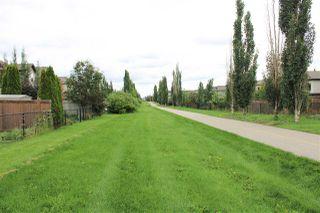 Photo 8: 11817 13A Avenue SW in Edmonton: Zone 55 House for sale : MLS®# E4168881