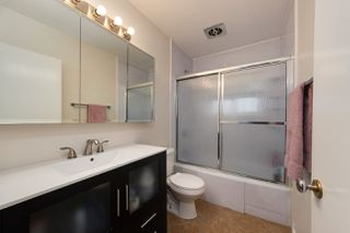 Photo 11: 11849 54 Street in Edmonton: Zone 06 House for sale : MLS®# E4177747