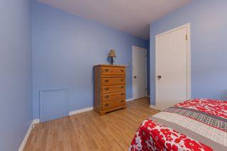 Photo 10: 11849 54 Street in Edmonton: Zone 06 House for sale : MLS®# E4177747