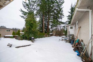 Photo 5: 3184 BAINBRIDGE Avenue in Burnaby: Government Road House for sale (Burnaby North)  : MLS®# R2428857