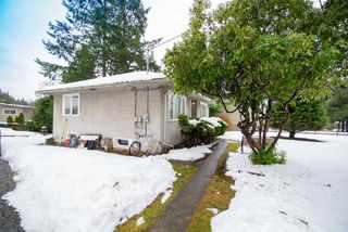 Photo 4: 3184 BAINBRIDGE Avenue in Burnaby: Government Road House for sale (Burnaby North)  : MLS®# R2428857