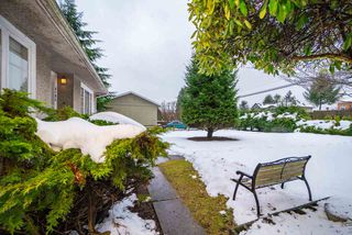 Photo 3: 3184 BAINBRIDGE Avenue in Burnaby: Government Road House for sale (Burnaby North)  : MLS®# R2428857