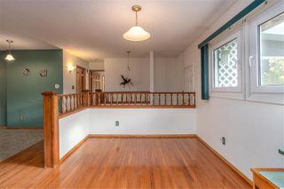 Photo 11: 11131 23A Avenue in Edmonton: Zone 16 House for sale : MLS®# E4191153