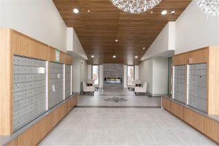 Photo 17: 404 11501 84 Avenue in Delta: Annieville Condo for sale (N. Delta)  : MLS®# R2452571