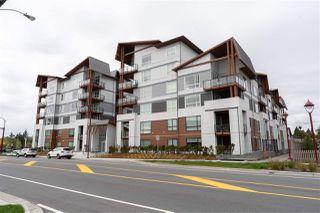 Photo 19: 404 11501 84 Avenue in Delta: Annieville Condo for sale (N. Delta)  : MLS®# R2452571
