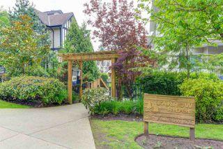 "Photo 20: 5 730 FARROW Street in Coquitlam: Coquitlam West Townhouse for sale in ""FARROW RIDGE"" : MLS®# R2457758"