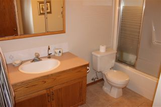 Photo 21: 272 Porter Avenue: Millet House for sale : MLS®# E4200936