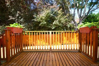 Photo 15: 790 Middleton St in Saanich: SW Gorge House for sale (Saanich West)  : MLS®# 845199