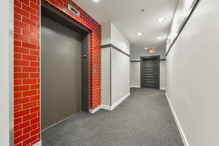 Photo 23: 303 9908 84 Avenue in Edmonton: Zone 15 Condo for sale : MLS®# E4208740