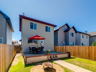 Photo 27: 54 CRANBERRY Place SE in Calgary: Cranston Detached for sale : MLS®# A1020600
