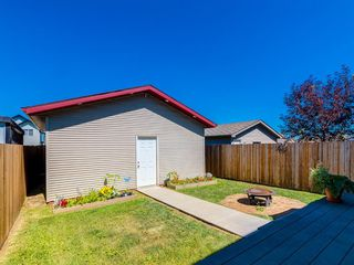 Photo 29: 54 CRANBERRY Place SE in Calgary: Cranston Detached for sale : MLS®# A1020600