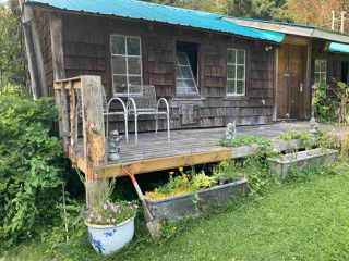 Photo 23: 12085 WEBSTER Street in Maple Ridge: Websters Corners House for sale : MLS®# R2502387