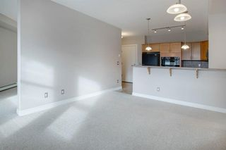 Photo 14: 323 3111 34 Avenue NW in Calgary: Varsity Apartment for sale : MLS®# A1046875