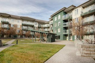 Photo 33: 323 3111 34 Avenue NW in Calgary: Varsity Apartment for sale : MLS®# A1046875