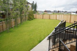 Photo 17: 7693 210th St. in Langley: Willoughby Heights House for sale : MLS®# F1312003