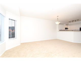 Photo 17: 302 838 19 Avenue SW in Calgary: Lower Mount Royal Condo for sale : MLS®# C4008473