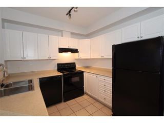 Photo 19: 302 838 19 Avenue SW in Calgary: Lower Mount Royal Condo for sale : MLS®# C4008473