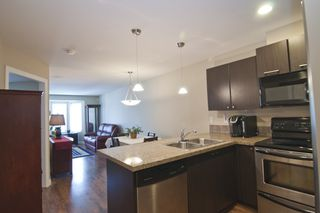 """Photo 4: 402 5488 198 Street in Langley: Langley City Condo for sale in """"Brooklyn Wynd"""" : MLS®# R2063283"""