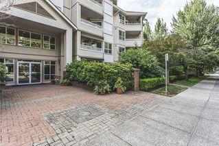 Photo 11: 302 8139 121A Street in Surrey: Queen Mary Park Surrey Condo for sale : MLS®# R2096498