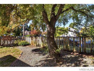 Photo 17: 1150 McKenzie St in VICTORIA: Vi Fairfield West Single Family Detached for sale (Victoria)  : MLS®# 742453