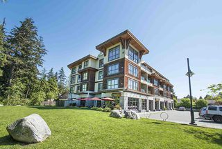 """Photo 20: 402 3732 MT SEYMOUR Parkway in North Vancouver: Indian River Condo for sale in """"NATURE'S COVE"""" : MLS®# R2168182"""