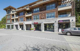 """Photo 19: 402 3732 MT SEYMOUR Parkway in North Vancouver: Indian River Condo for sale in """"NATURE'S COVE"""" : MLS®# R2168182"""