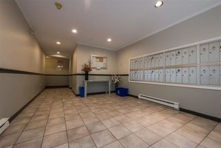 """Photo 17: 202 5577 SMITH Avenue in Burnaby: Central Park BS Condo for sale in """"COTTONWOOD GROVE"""" (Burnaby South)  : MLS®# R2204336"""