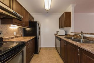"Photo 12: 202 5577 SMITH Avenue in Burnaby: Central Park BS Condo for sale in ""COTTONWOOD GROVE"" (Burnaby South)  : MLS®# R2204336"