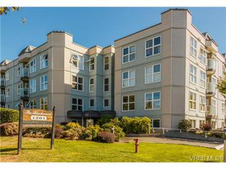 Photo 6: 206 1201 Hillside Avenue in VICTORIA: Vi Hillside Residential for sale (Victoria)  : MLS®# 369934