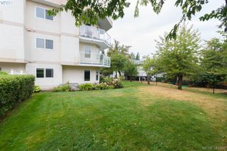 Photo 14: 103 3215 Rutledge St in VICTORIA: SE Quadra Condo for sale (Saanich East)  : MLS®# 685772
