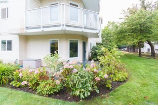 Photo 13: 103 3215 Rutledge St in VICTORIA: SE Quadra Condo for sale (Saanich East)  : MLS®# 685772