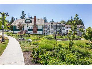 Photo 11: 203 16396 64 Avenue in Surrey: Cloverdale BC Condo for sale (Cloverdale)  : MLS®# R2315366