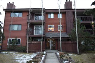 Main Photo: 303 10826 113 Street in Edmonton: Zone 08 Condo for sale : MLS®# E4137420
