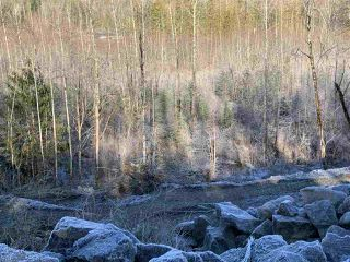 Photo 3: 51515 CHILLIWACK LAKE Road in Sardis - Chwk River Valley: Chilliwack River Valley Land for sale (Sardis)  : MLS®# R2337395