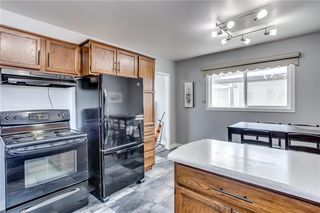 Photo 11: 1507 46 Street SE in Calgary: Forest Lawn Detached for sale : MLS®# C4226815