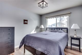 Photo 14: 1507 46 Street SE in Calgary: Forest Lawn Detached for sale : MLS®# C4226815