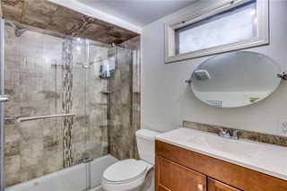 Photo 27: 1507 46 Street SE in Calgary: Forest Lawn Detached for sale : MLS®# C4226815